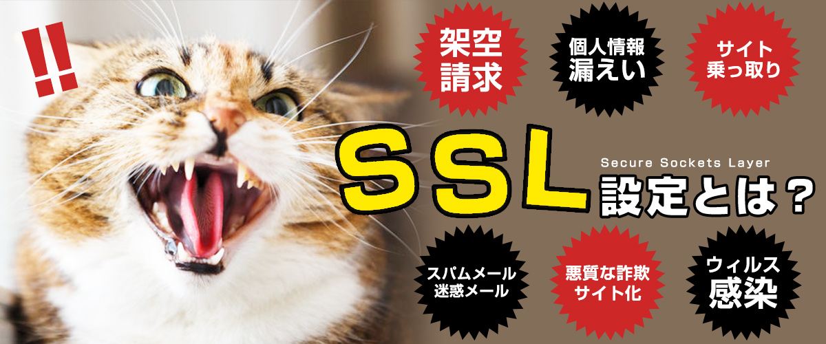 SSL設定とは?詳しく解説!